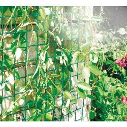 Climbanet - zöld, fekete műanyag kertirács szemméret: 46 x 44 mm