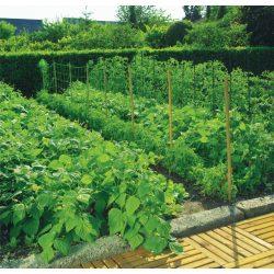 Kerti növénytartó és futtató - színtelen, 150 x 150mm / 1,2 x 5m