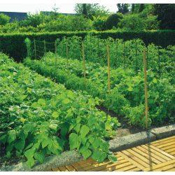 Uborkaháló - zöld, 150 x 170mm / 1,7 x 5m