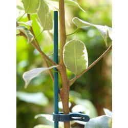 Festett bambuszpálca cserepes növényekhez 25db/csomag - zöld, 60cm