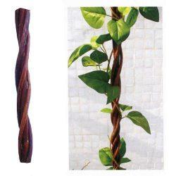 GreenGarden WILLO rúd, 120 cm, fonott, spirális