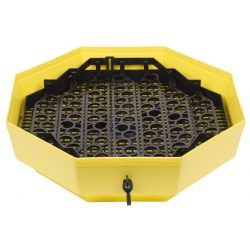 System CLEO IPPE-5, quail eggs
