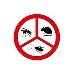 Rágcsálóirtás, rovarvédelem, vadvédelem