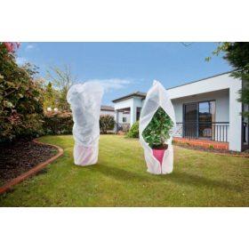 Növények téli védelme/téliesítés