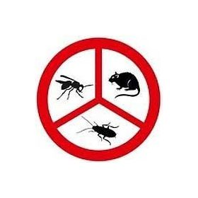 Védelem kártevők ellen, facsemete védő rács, csapdák, hálók