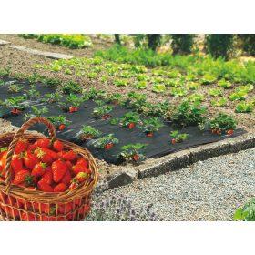 Agrofólia, agroszövet, fátyolfólia