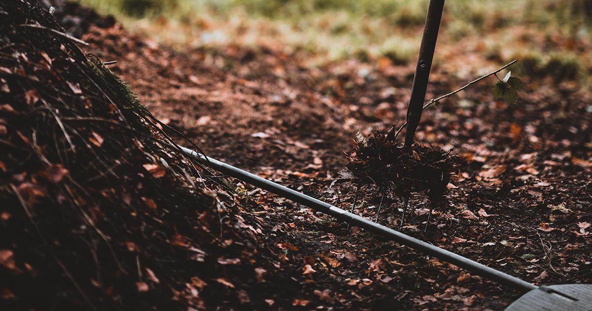 Fenntartható kertészeti ötletek