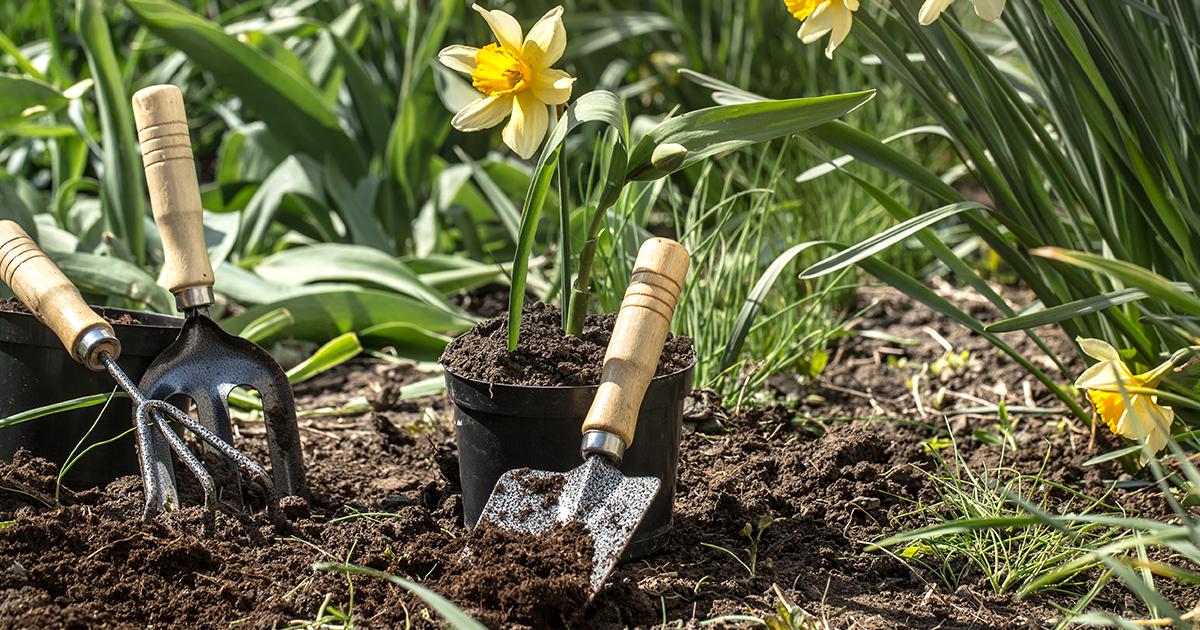Elengedhetetlen eszközök a kertészkedéshez