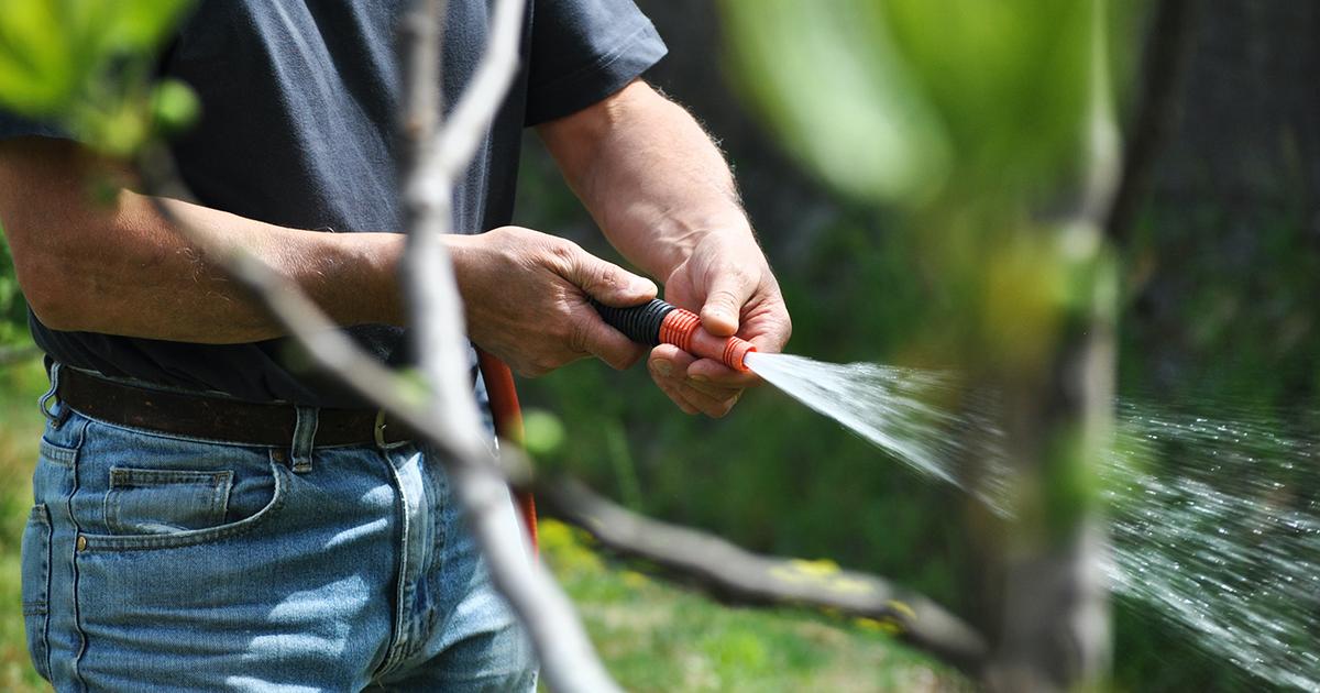 4 eszköz a kerti növények öntözéséhez